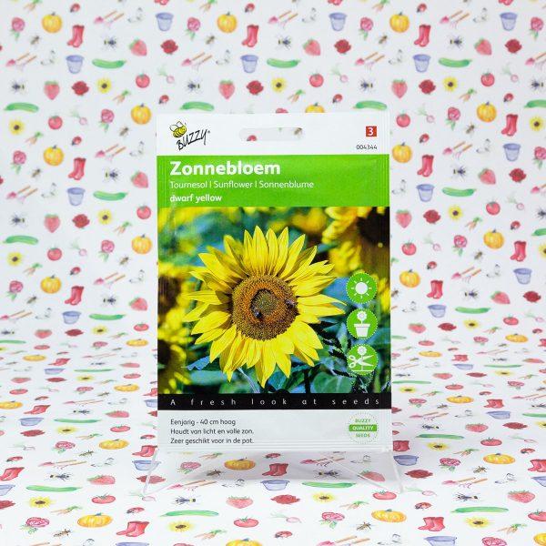 Buzzy® Helianthus, lage Zonnebloem Yellow