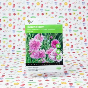 Buzzy® Centaurea, Korenbloem Pink Ball
